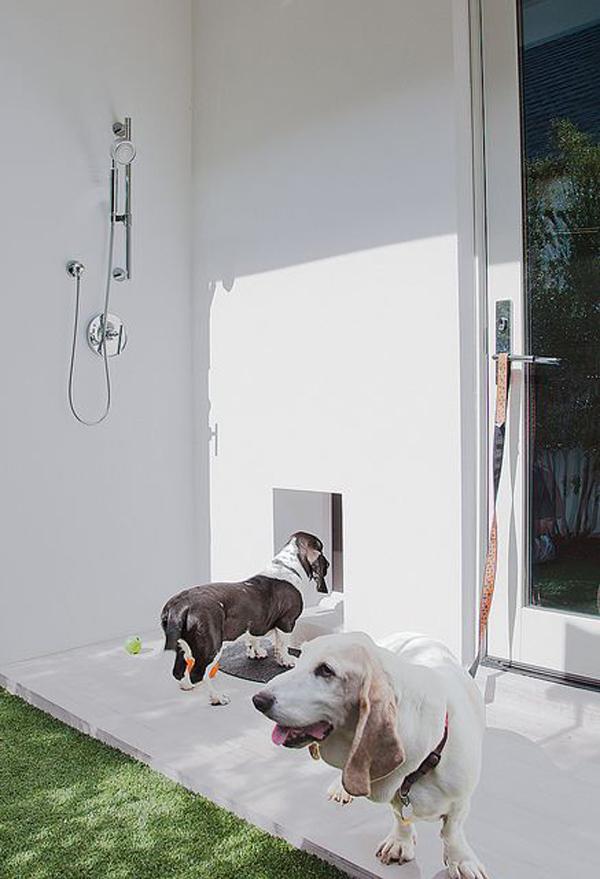 indoor-outdoor-dog-wash-stations
