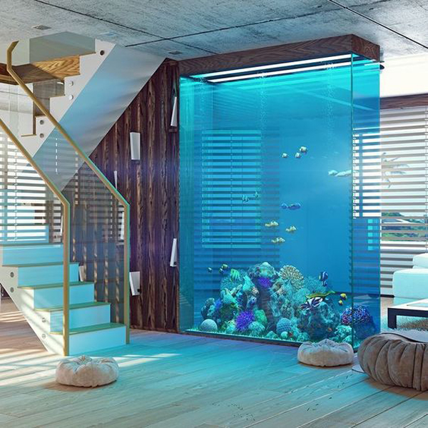 large-reef-aquarium-with-room-divider
