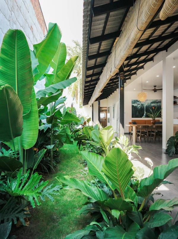 lush-tropical-garden-design