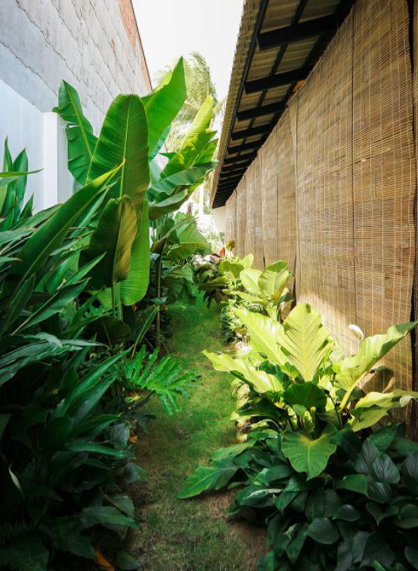 lush-tropical-garden-landscapes