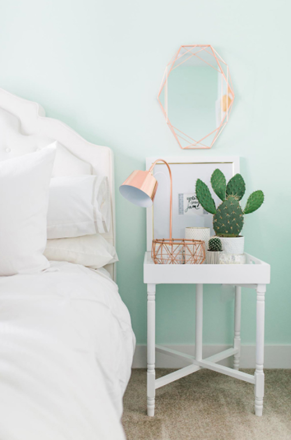 mini-cactus-for-bedroom-side-table