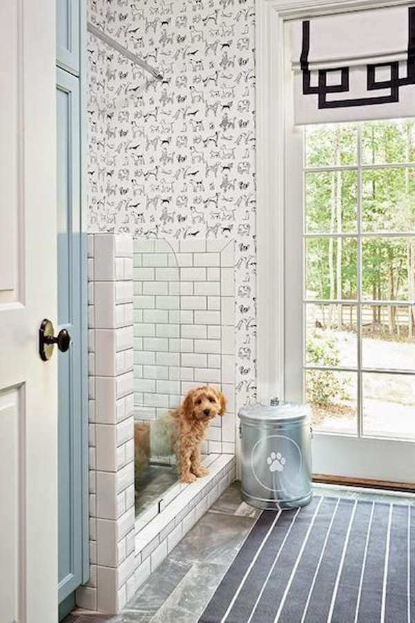 modern-and-bright-dog-wash-station-in-entryway