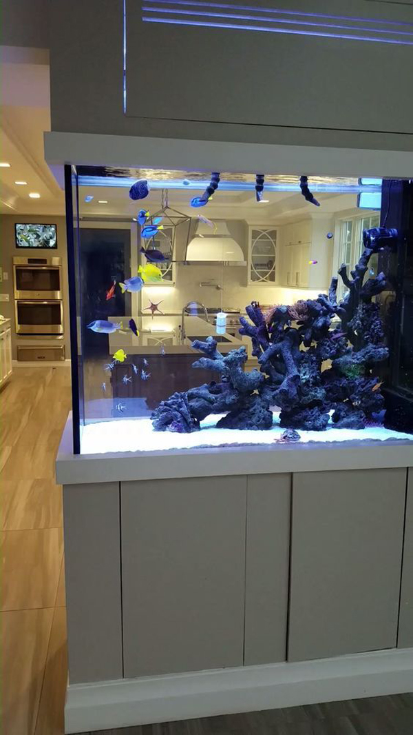 modern-aquarium-design-with-double-sided