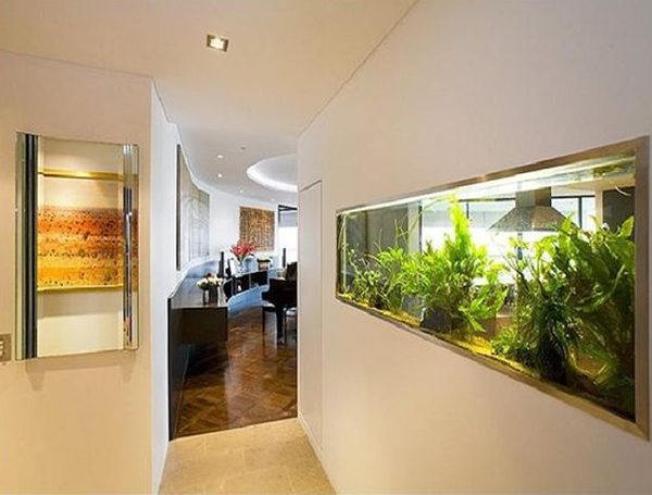 modern-wall-aquarium-design-with-double-sided