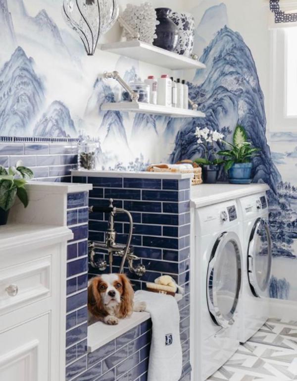 mountain-blue-dog-wash-station-theme
