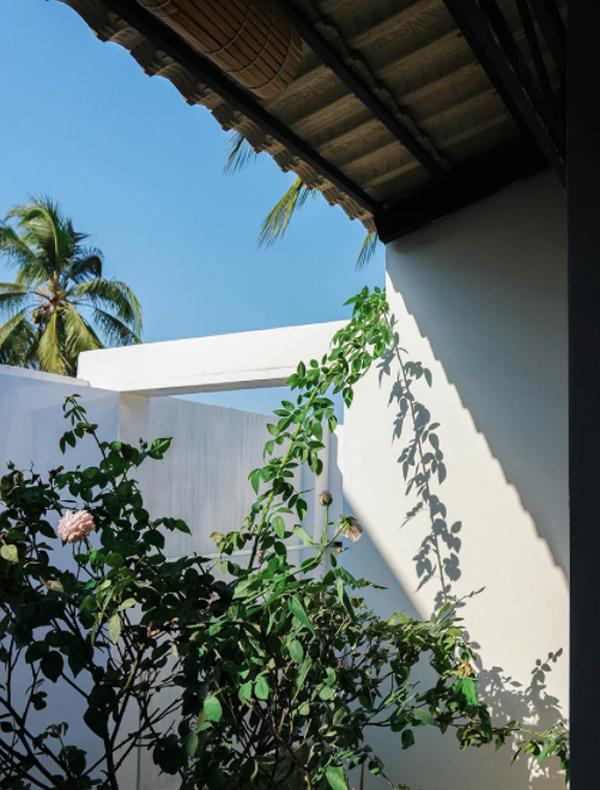 open-tropical-home-garden