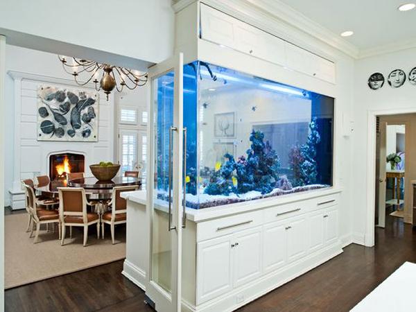 stylish-white-aquarium-wall-divider