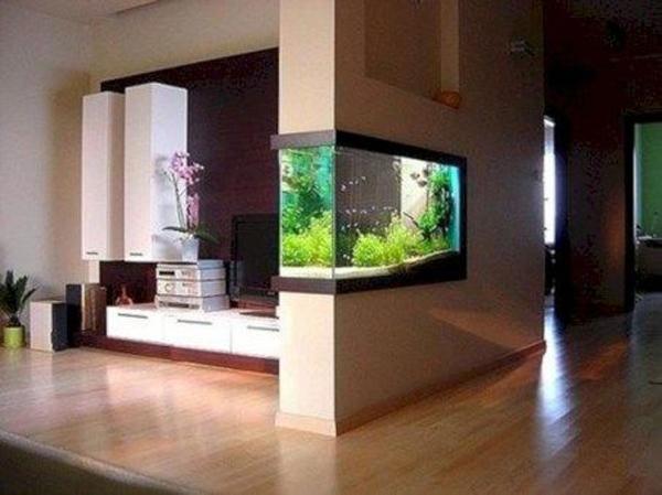 trendy-double-sided-aquarium-designs