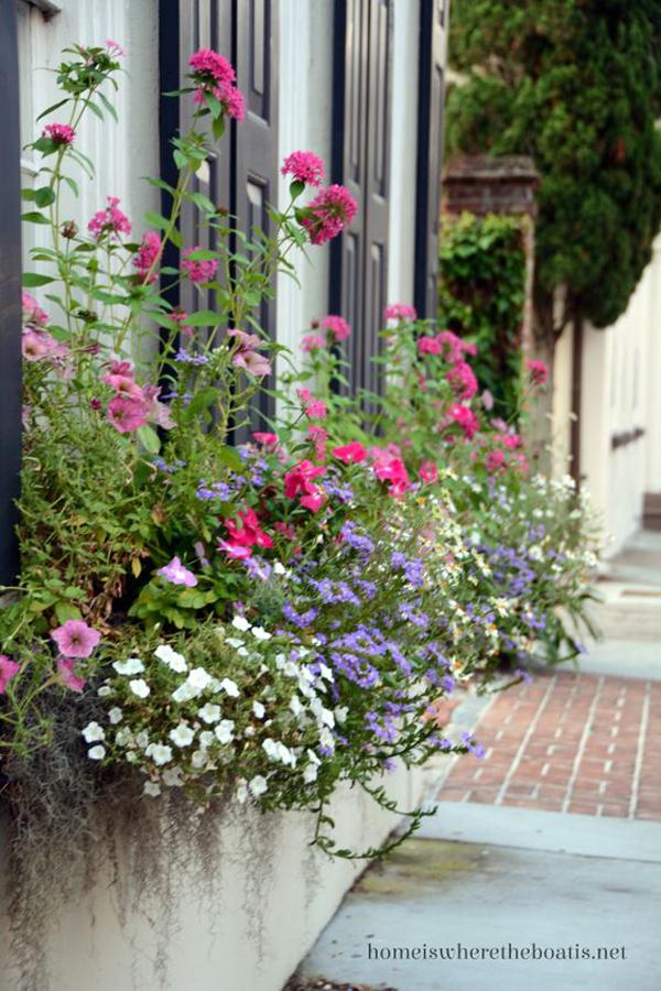 очаровательная-пышная-окно-цветочная коробка