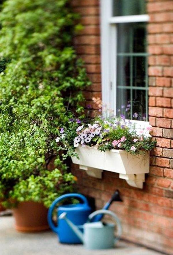 удивительное-окно-цветок-коробка-арт