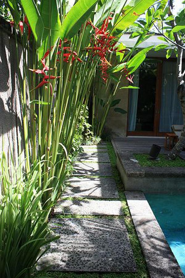 bali-style-garden-ideas-with-pool