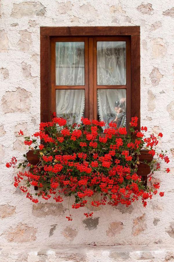 красивая-подоконно-цветочная коробка