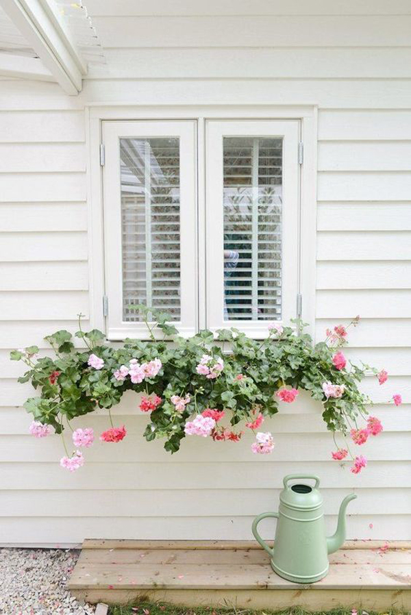 окно-цветочная коробка в сельском стиле