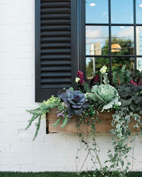 великолепные-поделки-окна-цветочные коробки