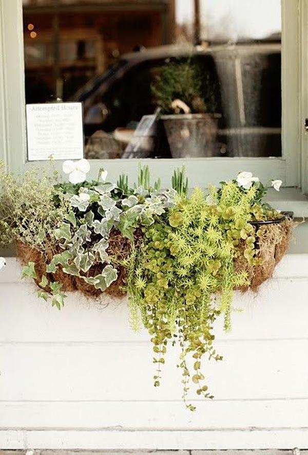 минималистичные идеи-поделки-окна-цветочные коробки