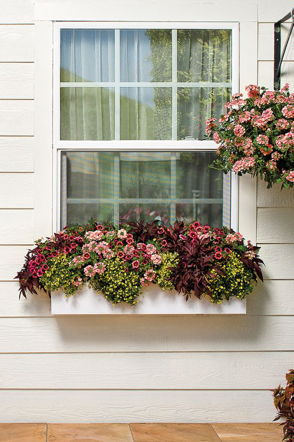 peachy-and-yellow-tones-window-flower-boxes