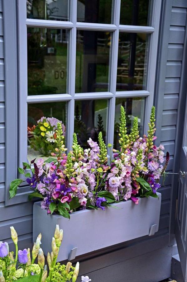 пурпурные окна-цветочные коробки-конструкции