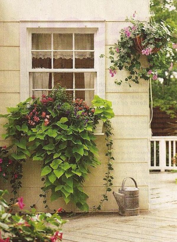 романтическое окно-цветочная коробка-декор