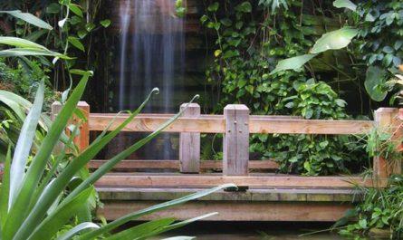 backyard-garden-bridge-ideas