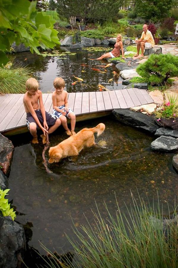 backyard-garden-pond-with-wood-bridge