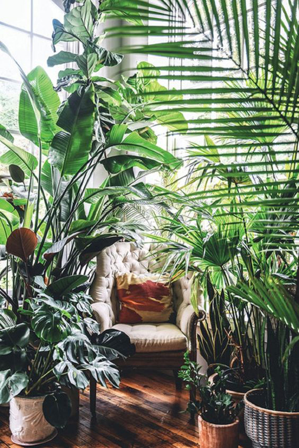 cozy-reading-nook-with-forest-surrounding