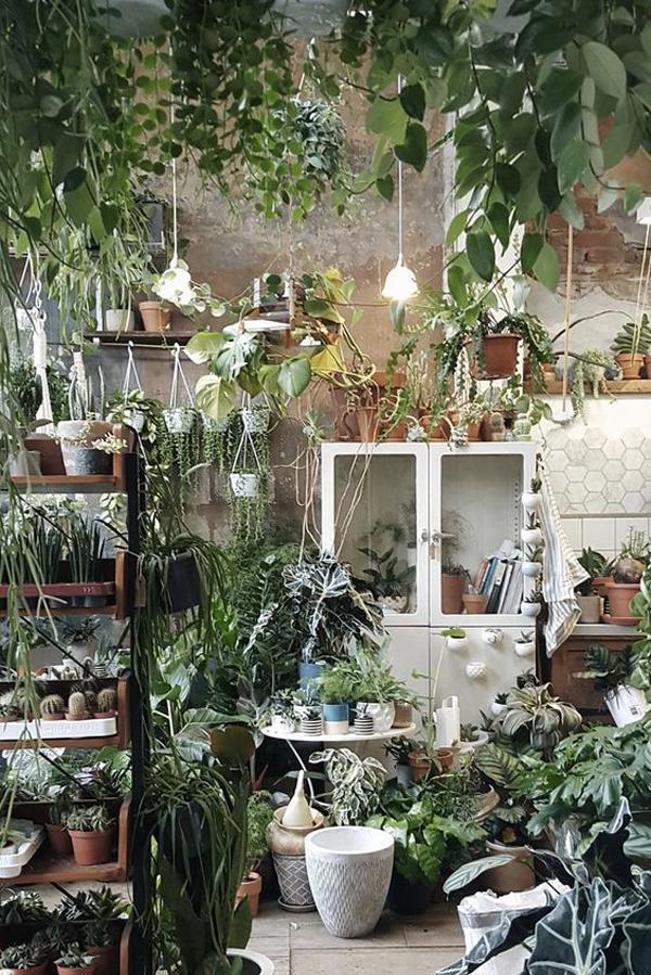 dreamy-jungle-interior-with-houseplant-decor