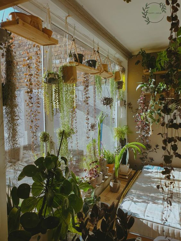 jungle-house-with-greenery-curtains