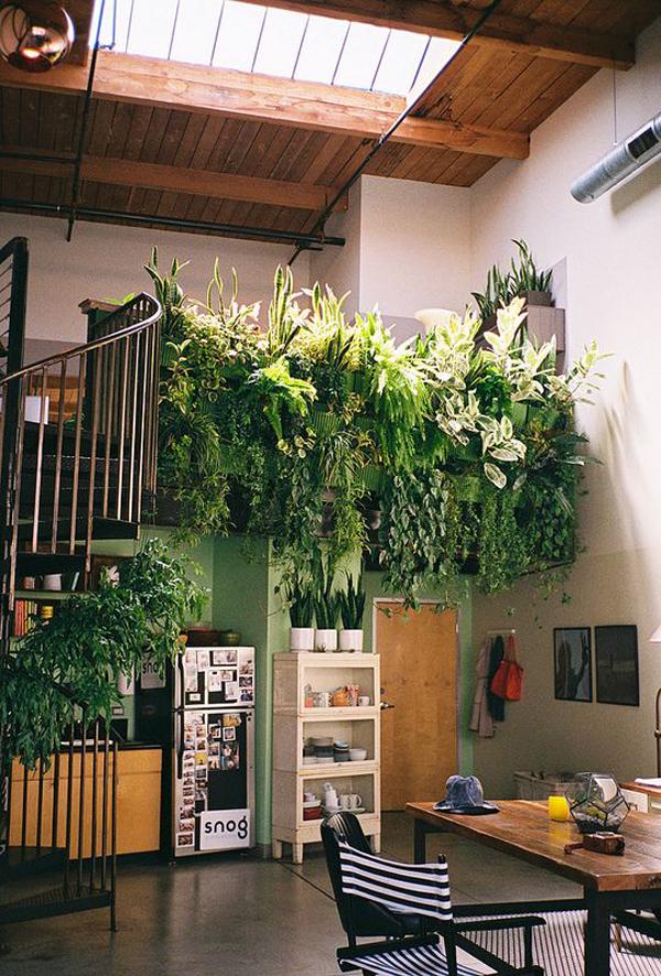 mezzazine-jungle-room-decor