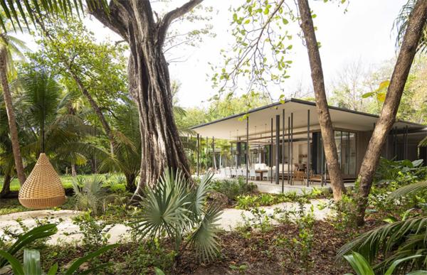 the-sirena-house-garden-with-hammock