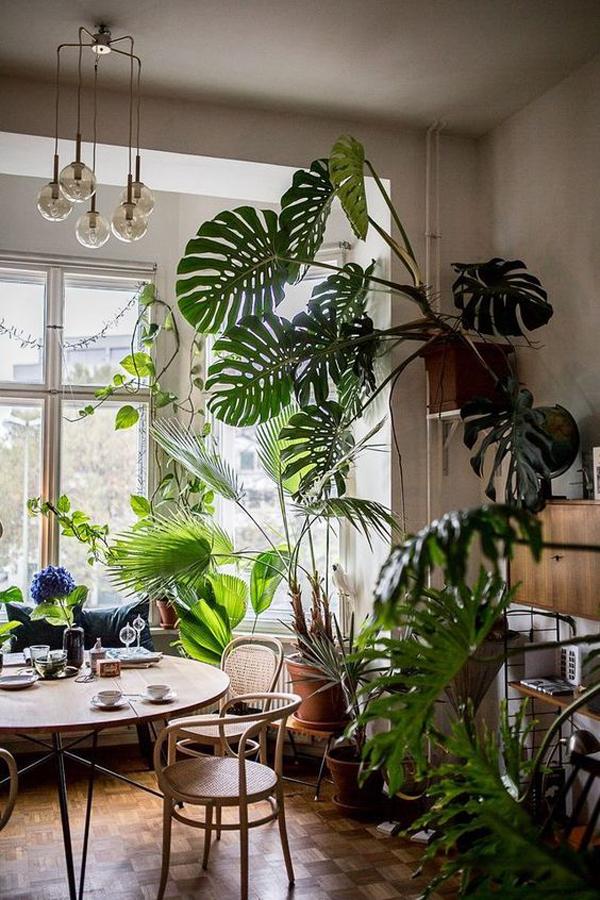 urban-jungle-dining-room-ideas