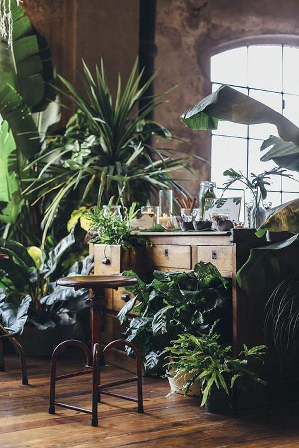 vintage-jungle-room-decor