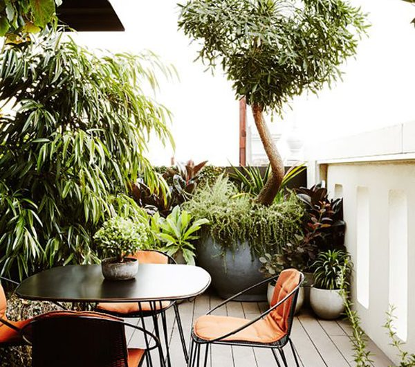 22 Perfect Urban Jungle Ideas For Your Patios