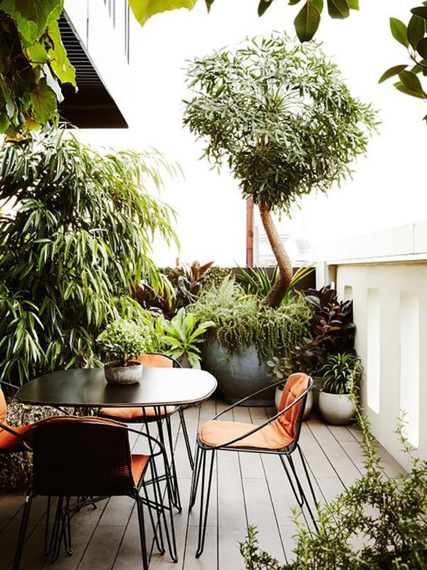 bautiful-jungle-patios-for-relaxing