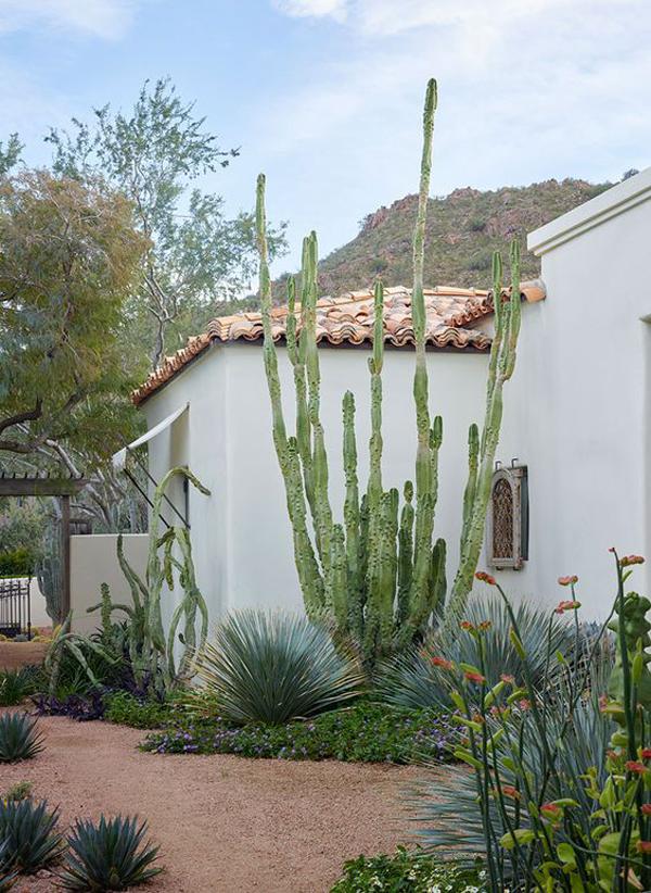 beautiful-house-of-desert-garden