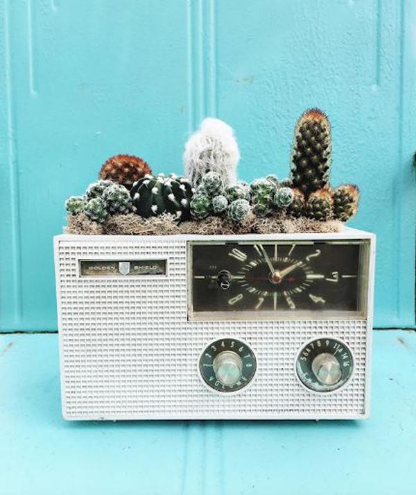 classic-radio-succulent-container