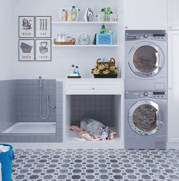 cool-laundry-with-dog-room
