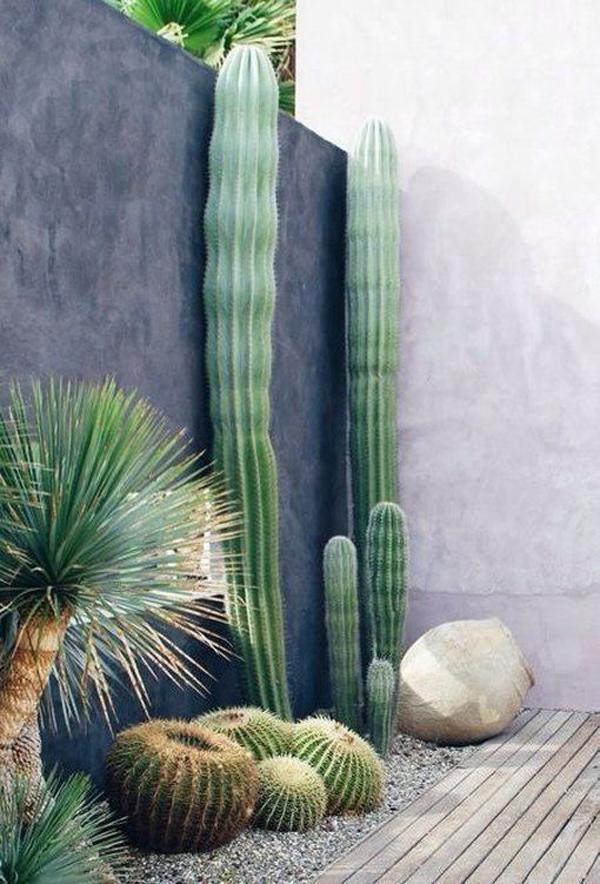 desert-chic-oasis-ideas