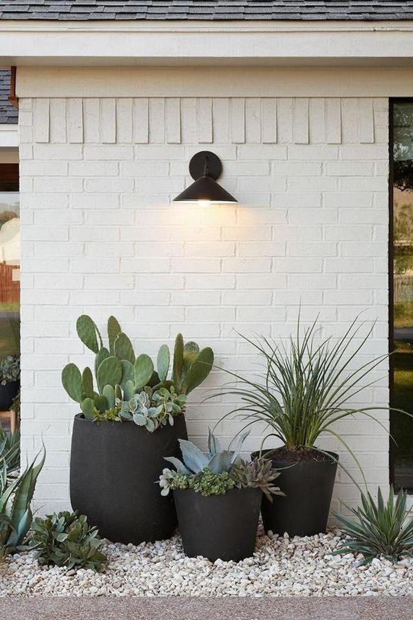 desert-container-gardens