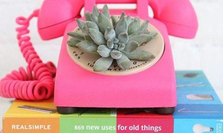 diy-rotary-phone-succulent-planter