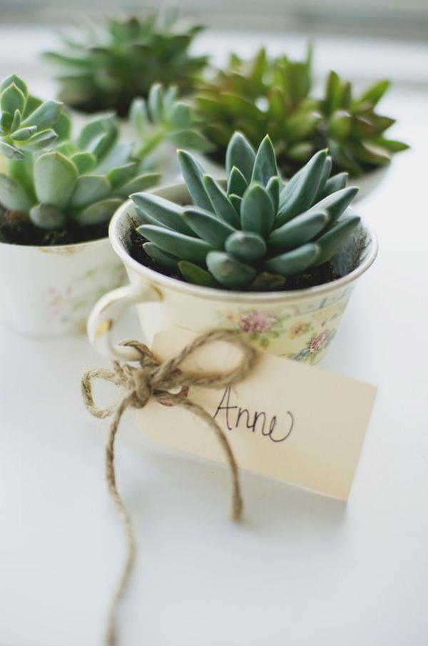 diy-tea-cup-succulent-plant-container