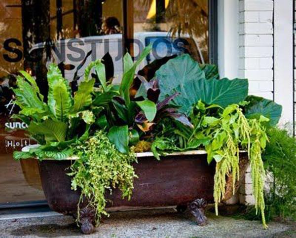 gorgeous-bathtub-container-gaden-for-shop
