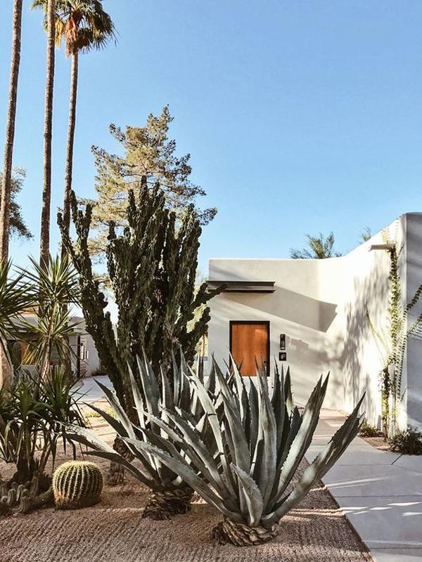 house-desert-landscaping-design