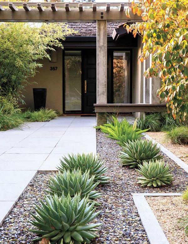 minimalist-desert-landscaped-design