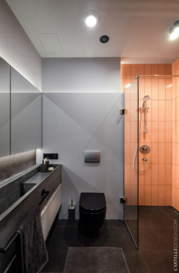 modern-and-minimalist-apartment-bathroom