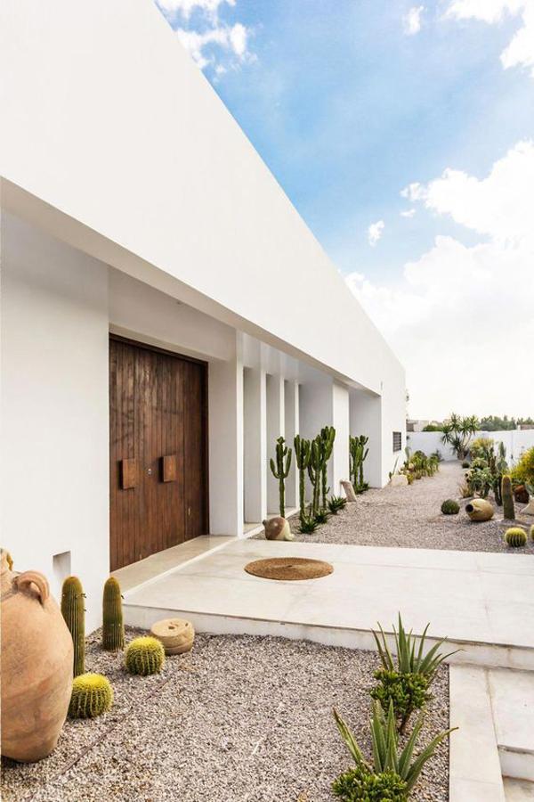 modern-desert-front-yard-landscape