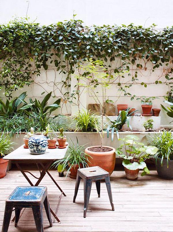 modern-urban-patios-with-jungle-theme