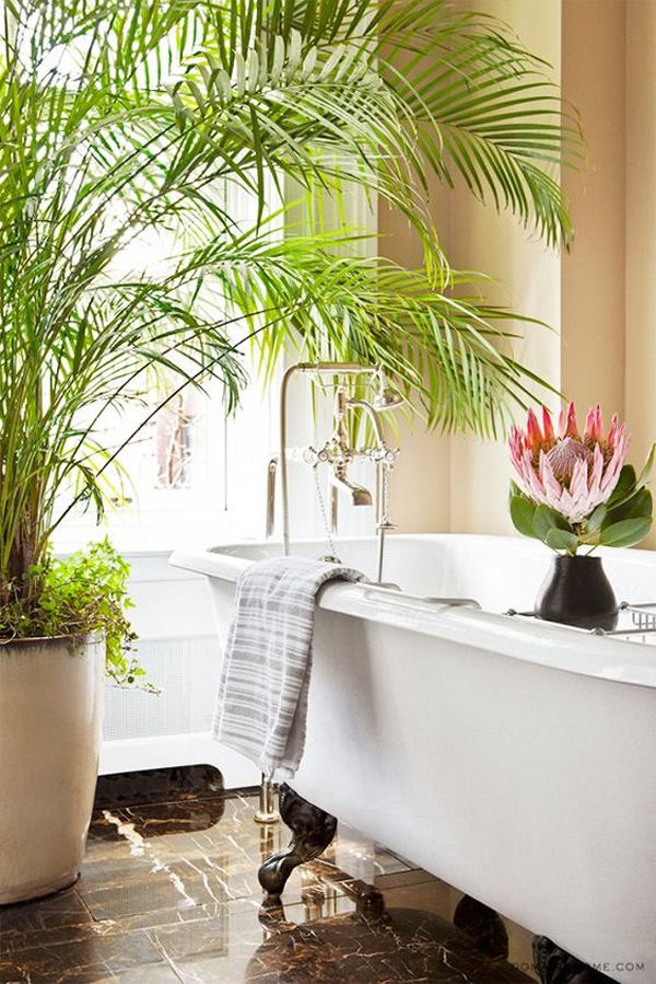 nature-summer-bathroom-with-indoor-plants