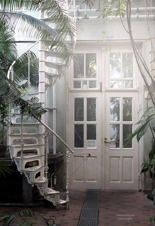 outdoor-urban-jungle-with-spiral-staircase-design