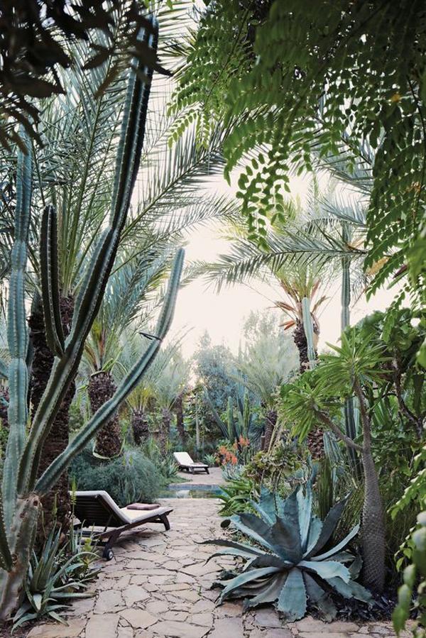 private-desert-garden-landscaping