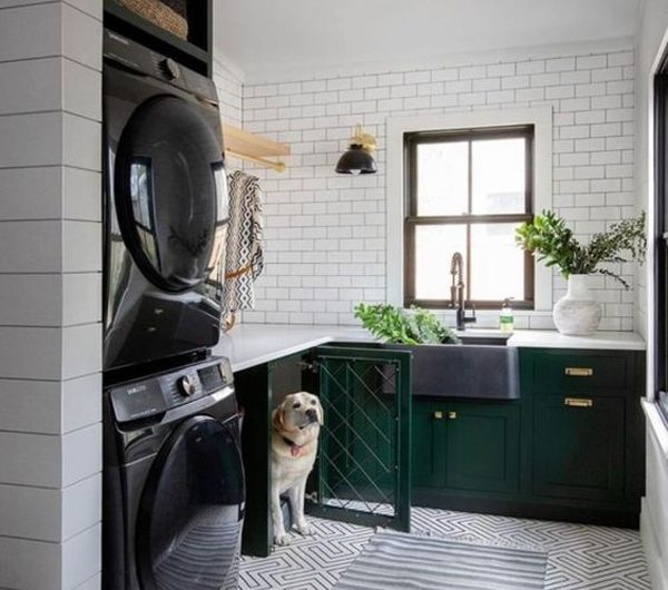 20 Functional Laundry With Dog Space Ideas